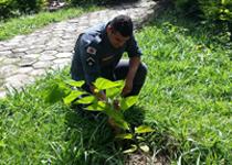 10º BBM implanta projeto de reflorestamento do Centro de Treinamento