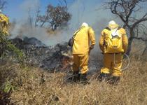 No período de estiagem, há um aumento nos casos de incêndio florestal