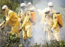 A época crítica dos incêndios florestais se aproxima e Bombeiros realizam trabalho de prevenção